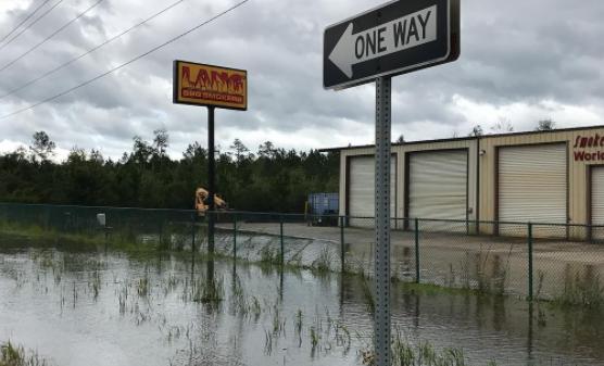 Hurricane Irma hits Georgia